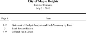 Icon of 07-31-2016 Budget Analysis