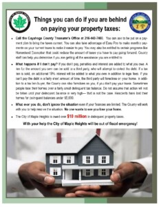 Icon of Property Tax Flyer