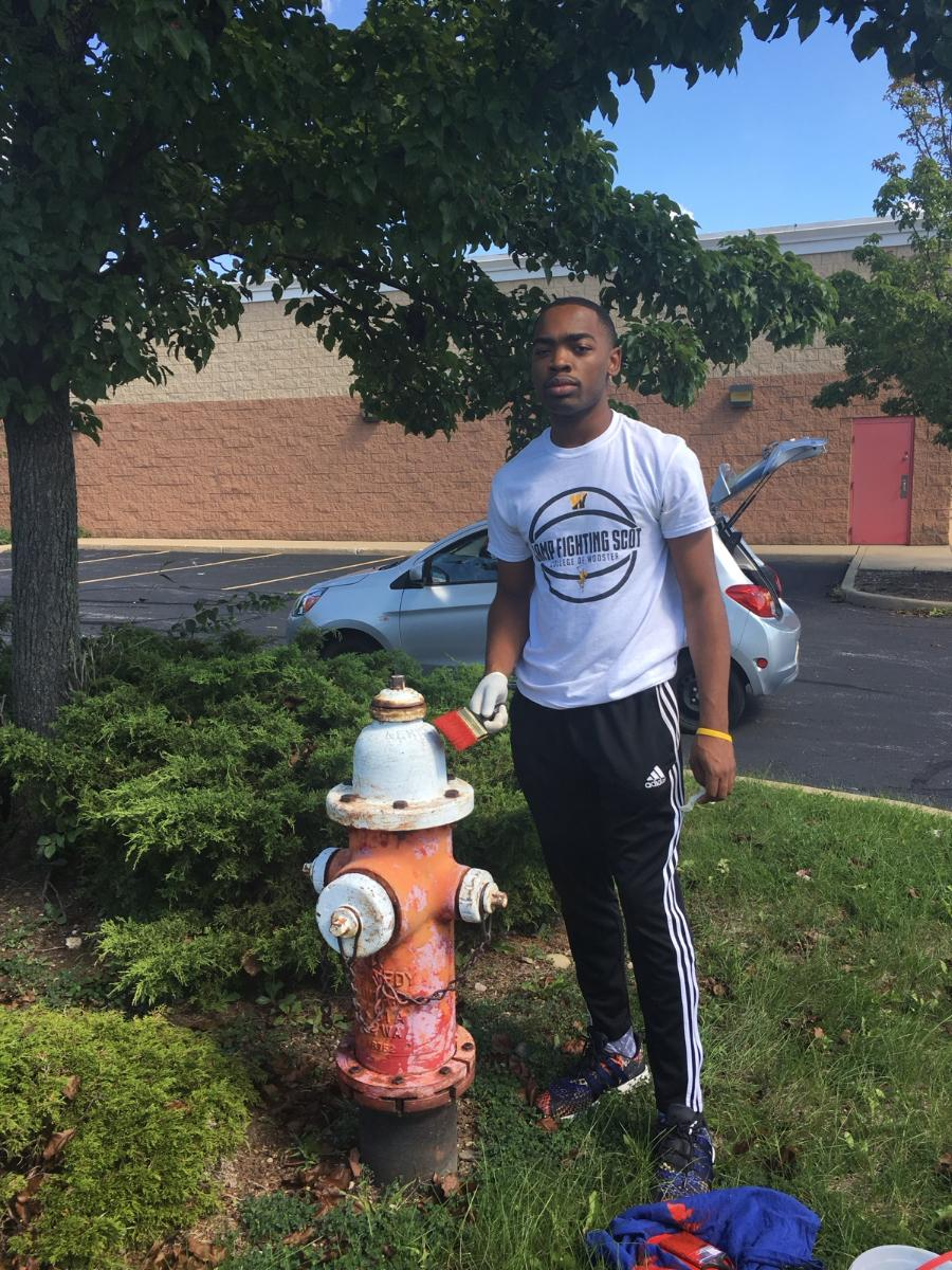 Fire Hydrant Painting